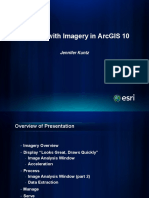 1a_working_with_imagery_in_arcgis10.pdf