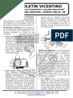 Boletín Biología 28 Pre 2a-2b Aparato Respiratorio Urinario en Cordados