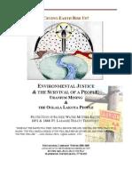 EnvironmentaJusticePDF[1]