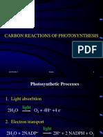 IX-X Carbon Reactions Photosynthesis