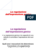 Regolazione Dell'Espressione GenicaLICEO