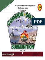 Common Smart Submunition