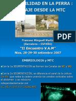 Acupuntura para la fertilidad, Acupuntura veterinaria Francesc Minguell