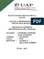 Trabajo Academico de Metodologia Del Trabajo 2017207229 Condori Condori Juan