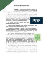 Porfirinas y Pigmentos biliares (desgrabaci+¦n)