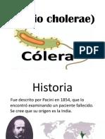 Vibrio Cholerae)