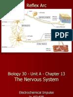 Bio30 - Unit a - 4 Notes