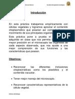 biolo 4 informe