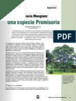 M&M_49_La Acacia Mangium una especie promisoria.pdf