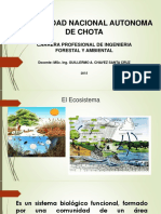 Cuarta Clase Ecosistemas