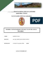Informe Costos de Produccion de Acelga