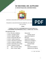 Proyecto Suches UNA.doc