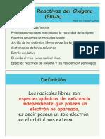 teorico_15
