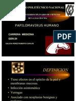 Papi Loma Virus