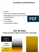 Caracteristicas Fisicas e Morfologicas_2