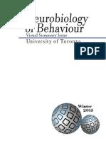 Visual Summary Issue.pdf