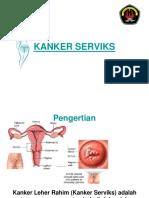kankerserviks-110112015056-phpapp01.ppt