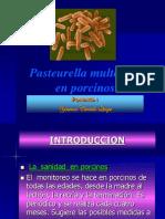 presentacuin pasteyrilosis