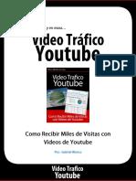 trafico-youtube.pdf