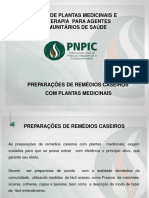 Remedio Caseiros Com Plantas Medicinais.Ppt