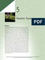 NeuroSci5E_Chapter05.pdf