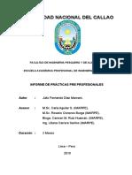 242967858-INFORME-PRACTICAS-FERNANDO-IMARPE-2010-doc.doc