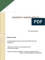 Placenta y Anexos Fetales