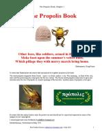 Pro Polis Book 1