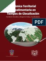 Dinamica Territorial