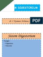 Sistem Digestorium