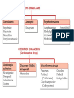 Sistem Saraf Pusat Dan Kognitif