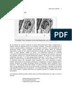 INCLUSIONES%20FLUIDAS.pdf