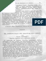 Barros 1933 Pidencito Chile