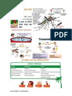 Dengue 2017