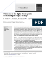 Digital Flexor System.pdf