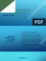 REVISÃO de Produção e Recepção de Texto 2
