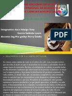 Diapositiva de Agronegocios