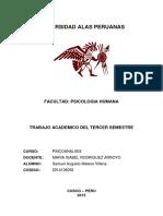 Trabajo Academico Psicoanalsis - Samuel Augusto Mateos Villena
