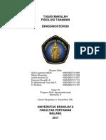 Brassinosteroid 2