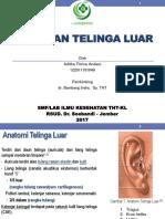 Aditha - Penyakit Telinga Luar.pptx