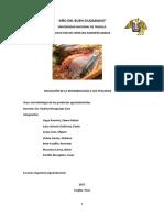 pescados y aplicaciones