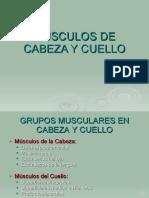 Msculos Nervios y Arterias Faciales-111010003645-Phpapp01