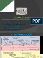 1. METAMORFISMO