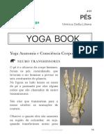01 Yoga e Anatomia PES