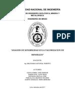 Analisis de Sensibilidad en La Valorizacion de Minerales (Reparado)-1