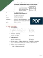 1.0 Informe Finalchila