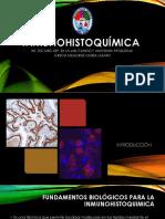 Inmunohistoquímica-Int 2017 Hrdc
