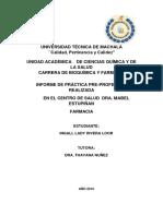 Informe de Practicas Preprofesionales CASI FINAaaaaaaal