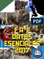 QUÉ ES LA FAE-2017.pdf