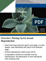 Bio 2 - Reproduction& Growth